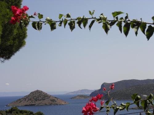 Beautiful sea view home