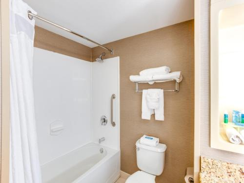 Deluxe Suite -  Disability Access Roll Shower