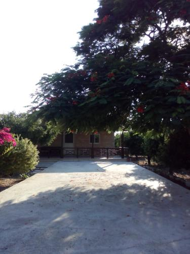 Cottage in Cyprus