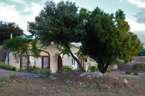 Cave Hotel Rural & Spa Las Nubes 14