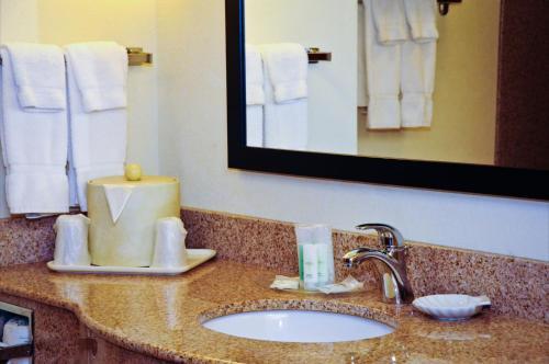 Comfort Suites Newport News Airport
