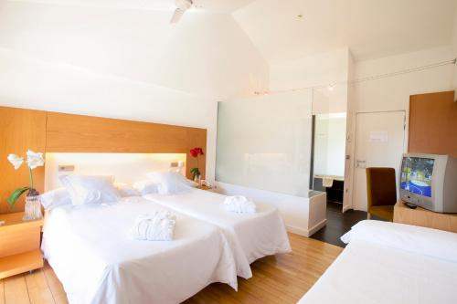 Double Room with Extra Bed (2 Adults + 1 Child) Tierra de Biescas 4