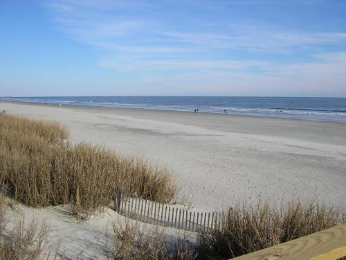 Restaurants Near Mar Vista Grande Myrtle Beach