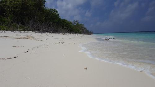 Deep Circle, Gaafu Alifu Atoll