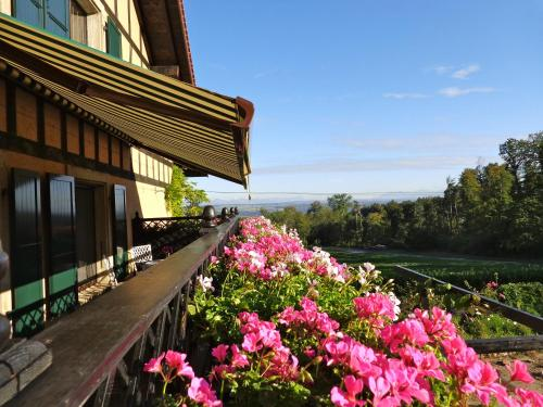 Find cheap Hotels in Switzerland
