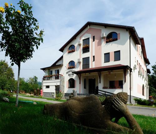 Отель Bali Spa ProEstetica Sana 4 звезды Румыния