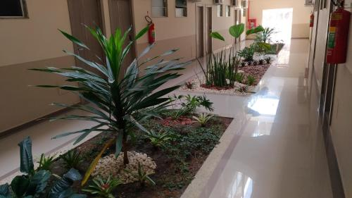 Paracambi Top Hotel