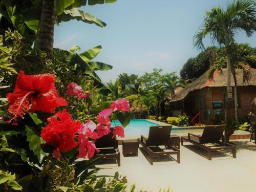 HotelIsland Tiki Paradise Resort