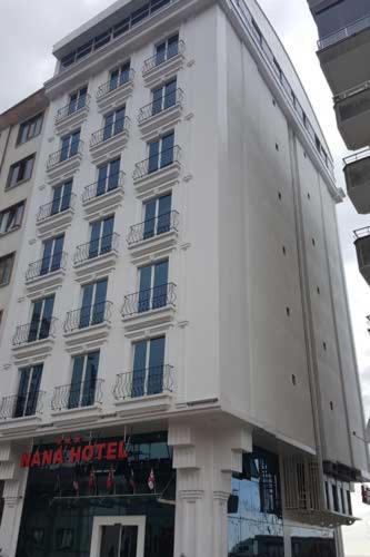 Nana Hotel
