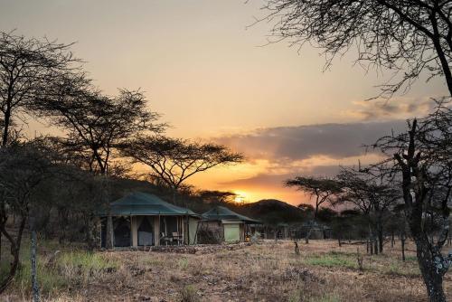 Ole Serai Luxury Camp