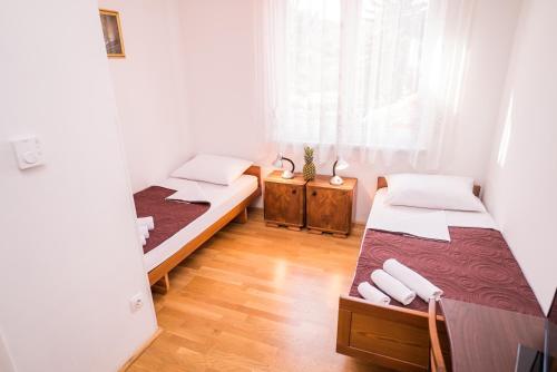 Hostel Vincentinum