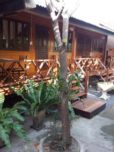 ayutthaya homestay Book athithara homestay, ayutthaya on tripadvisor: see 25 traveller reviews, 57 candid photos, and great deals for athithara homestay, ranked #7 of 73 speciality lodging in ayutthaya and rated 4 of 5 at tripadvisor.