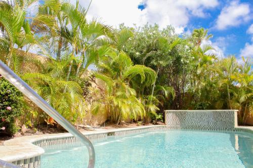 Paradise Found, Palm Beach