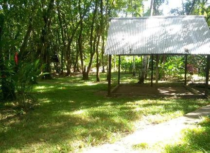 Camping Michol Palenque