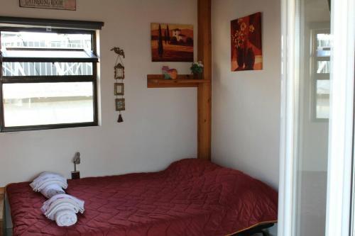 Anastasia' s apartement.  Foto 18