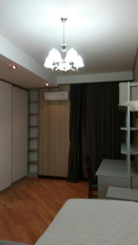 Апартаменты Диляры Алиевой, 237