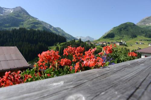 Hotel Biobauernhof Gehrnerhof Am Arlberg (Warth)