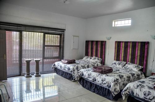 Sani bonani guest house
