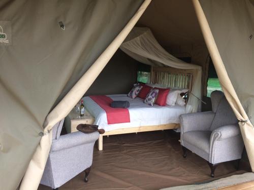 Tlouwana Camp, Kasane