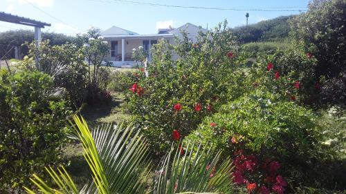 Hebergement Vue Sur Mer, Port Mathurin