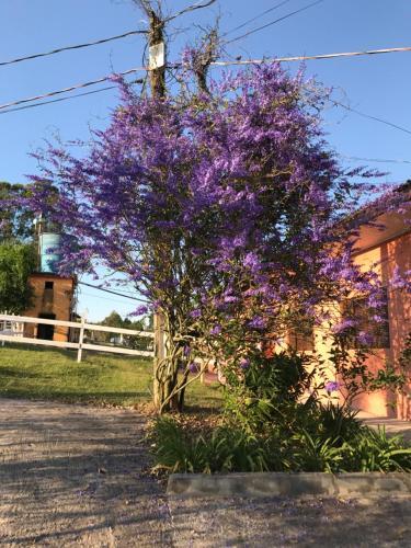 Rancho São Joaquim