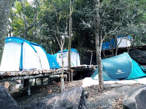 Property Image#1 Evergreen Tent Stay u0026 Trekking & Evergreen Tent Stay u0026 Trekking India Tariyod | RentByOwner.com ...