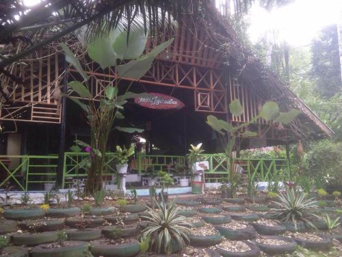 Pondok Wisata Guesthouse