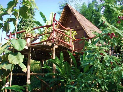 Bamboo Country Lodge