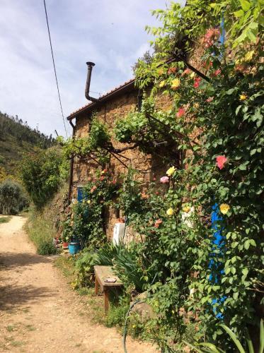 Agro-turismo Quinta da Fonte