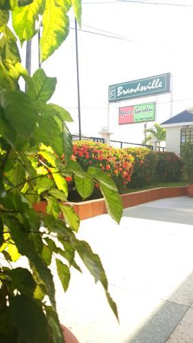 HotelBrandsville Hotel