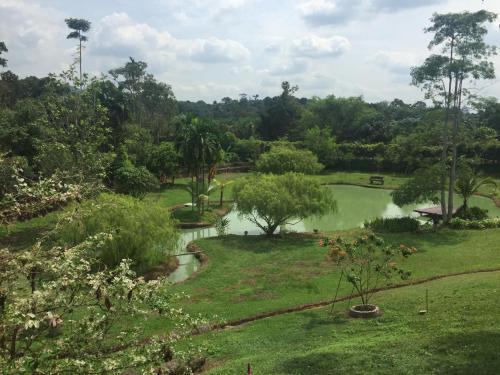 Qasryna Tea Garden