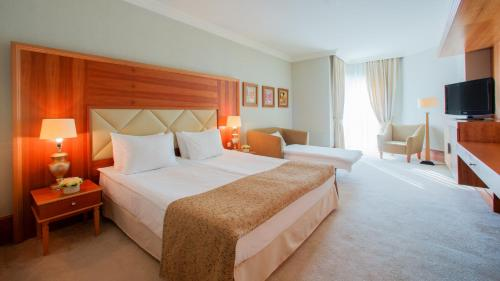 Superior Double Room with Treatment