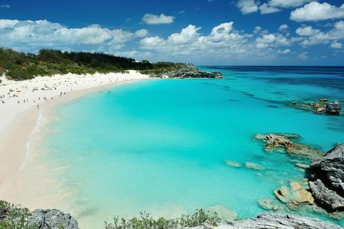Bermuda Dreams, Гамильтон