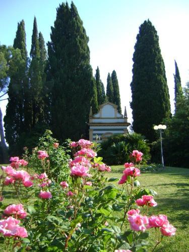 Fattoria Collebrunacchi, San Miniato