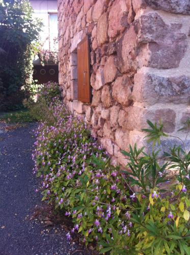 Maison à 6km de Cordes-sur-Ciel