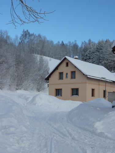 Отель Apartman Svoboda 0 звёзд Чешская Республика