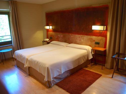 Habitación Doble - 1 o 2 camas Hotel Santa Cristina Petit Spa 3