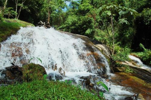 Отель The Natural Healing Spa Retreat 3 звезды Таиланд