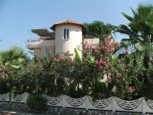 Picture of Tango Pension