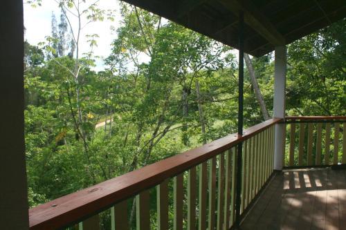 Checo Hill Farm, Sayab Camp