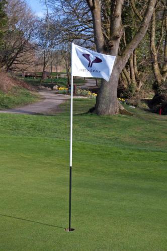 Trethorne Hotel and Golf Club