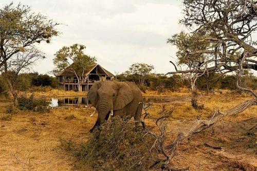 Omogolo Bush Lodges - Motswiri Lodge, Rammu