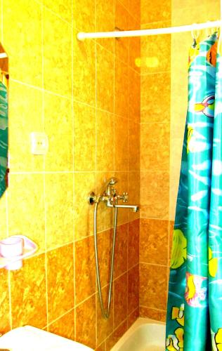 Cameră twin cu baie proprie (Twin Room with Private Bathroom)
