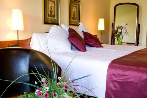Superior Double Room with fireplace and Spa Access Hotel Del Lago 2