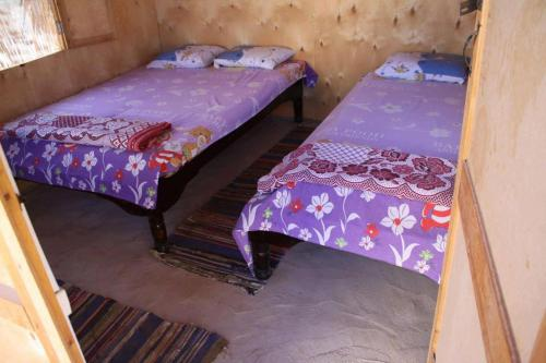 Baraka Camp, Taba