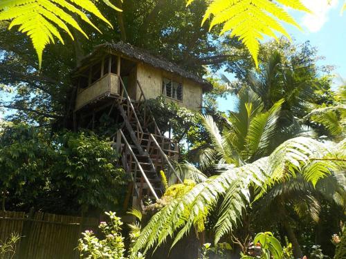 Tanna Eco Venture Bungalow & Adventure Tree House, Loanengo