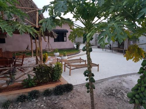 Utulivu Garden Lily, Nungwi
