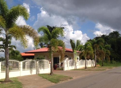 Direct Aan De Suriname Rivier, Domburg