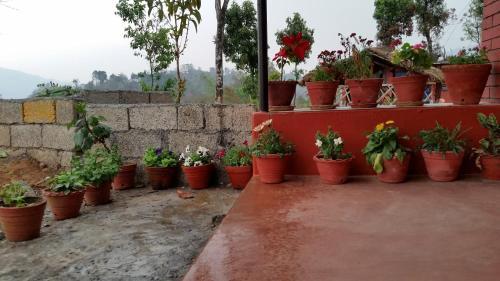 Hotel Red Rose, Deorāli
