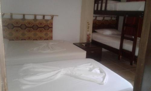 Hostal Humpback Internacional